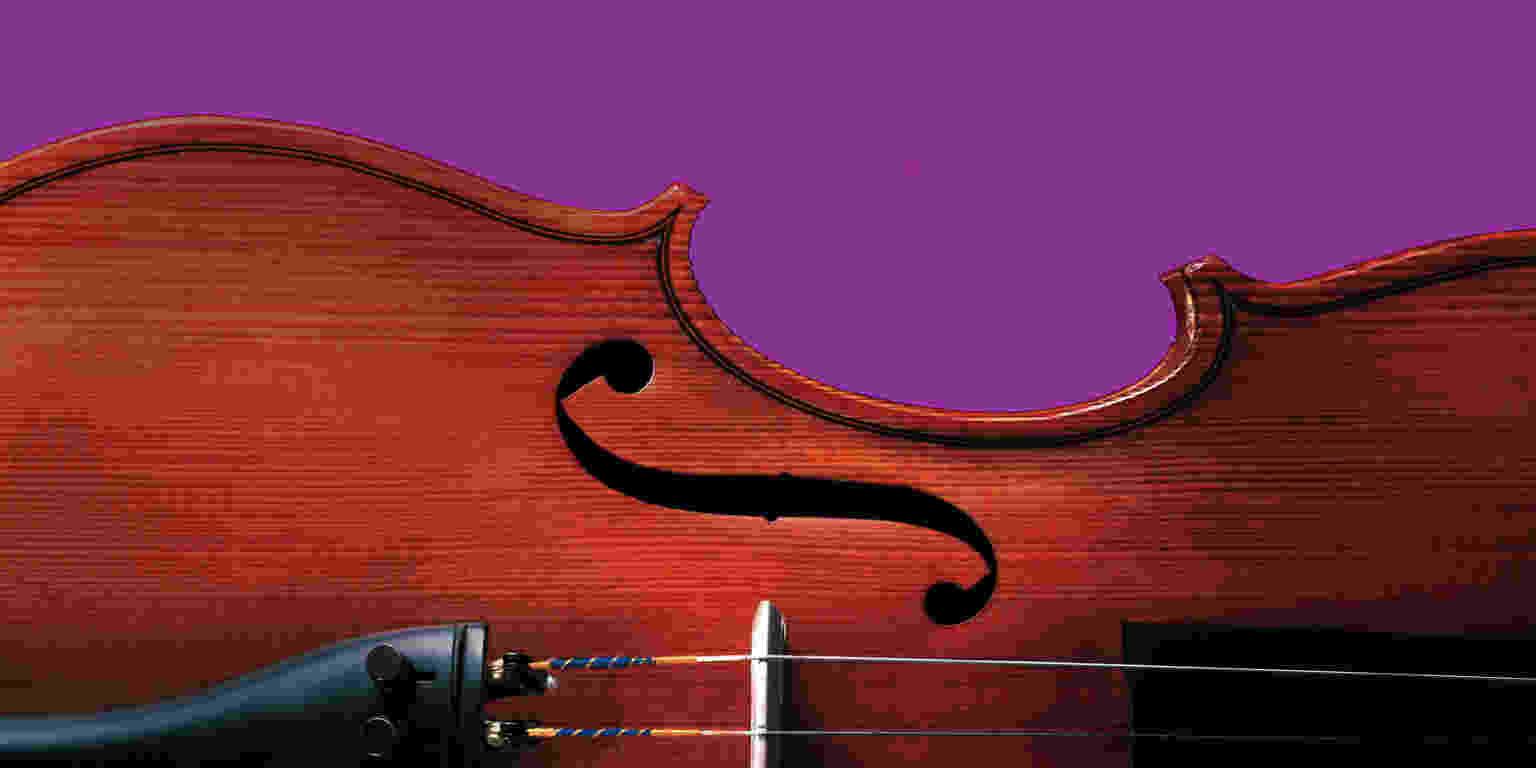 Violin16